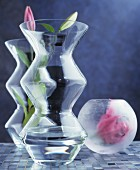 Lily buds in round and angular vases made from matt and clear glass