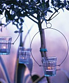 Candle lanterns hung from tree in round metal frames