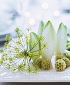 Arrangement of dill flower and chicory leaves on table