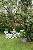Weiße Gartenmöbel auf dem Rasen zwischen alten Bäumen im Garten