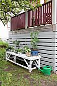 Potting table in garden against board wall of raised terrace