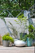 Gruppe mit verschiedenen Topfpflanzen in Kübeln vor der Mauer