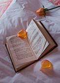 Gelbe Rosenblätter auf einem aufgeschlagenen Buch