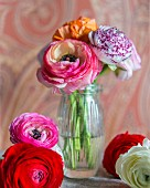 Arrangement of ranunculus flowers
