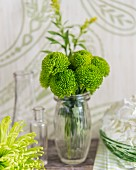 Glass vase of green dahlias