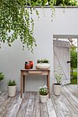 Offene Tür in der Mauer von der Terrasse zum Garten