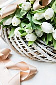 Bunch of white tulips in wicker wreath with satin ribbon