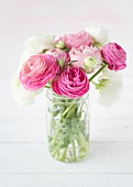 Pink and white ranunculus in glass vase