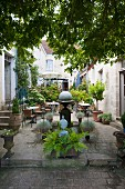 Cafe in planted, Mediterranean-style courtyard