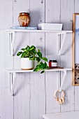 White DIY wall bracket with green plant on plank wall