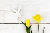 White wooden Easter bunny and yellow daffodil and tulip