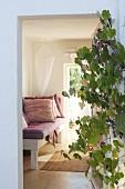 Weinrebe mit Trauben an Eingang und Blick auf Tagesliege mit altrosafarbenen Kissen