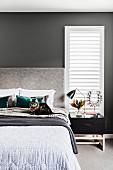Katze sitzt auf dem Bett vor grauer Wand mit Lamellenfenster