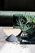 Still life with sculpture, vase and succulent plant in shades of green