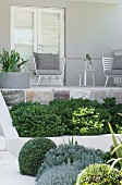 Plants with different shades of green in front of a terrace