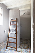 Ladder leaning against partition wall between toilet and shower