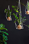 Geometric metal hanging baskets with lucky feathers