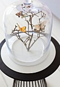 Butterfly decorations on branches under glass cover