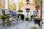 Chairs at bistro table and iron bench on veranda with autumn decorations
