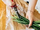 Blumenstiele werden von mit Gartenschere gekürzt
