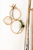 Arrangement of twigs and straw in embroidery frames on wall