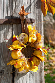 Wreath made of chaenomeles (ornamental quince), acer (maple) leaves