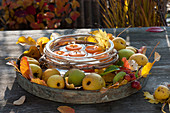 Round tray with Chaenomeles (ornamental quince), Malus (ornamental apple)