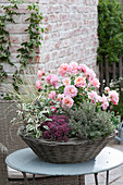 Basket bowl with pink (rose), thymus (thyme), sedum cauticolum