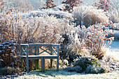Wooden bench on the bed with frozen perennials and grasses