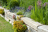 Drywall with Veronica spicata 'Silver Carpet' (Honorary Award)