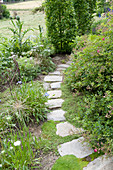 Curved path made of natural stone slabs, pink (rose), allium