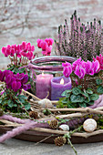Cyclamen in a wreath of clematis tendrils