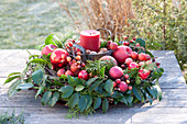 Red candle in a wreath of Ilex and conifers branches