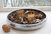 Star-shaped lanterns in silver bowl with Quercus leaves