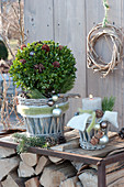Buxus (box) ball and candle in baskets, decorated