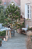 Christmas terrace with Pinus nigra (black pine)