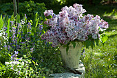 Syringa (lilac) bouquet on the flowerbed with Nepeta (catmint)