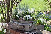 Gray concrete box and pot planted white
