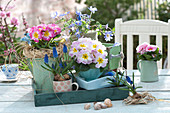 On trays and on old drawer staggered spring arrangement