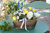 Hyacinthus 'White Pearl', Viola cornuta Rocky 'Lavender Blush'