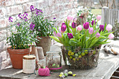 Tulipa (tulip) bouquet in wire basket with Easter eggs