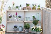 Spring balcony with self-built shelf