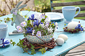 Arrangement in cereal bowl as table decoration, iris reticulata, scilla