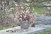 Fragrant Bouquet of Viburnum bodnantense 'Dawn'