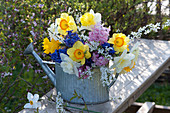 Colorful spring bouquet in zinc watering can, Narcissus, Spiraea