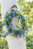 Small myosotis (forget-me-not) and grasses wreath