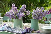 Bouquets of Syringa vulgaris 'Katherine Havemeyer' (lilac)