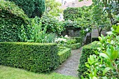 Paths lined with yew hedges in green garden
