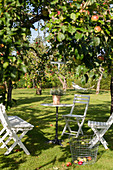 Folding chairs and bistro table under apple tree in summer garden