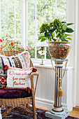 Cushions on rattan armchair and potted hydrangea on plant stand in conservatory